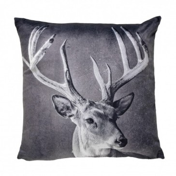 Stag Black Velvet Square Cushion by Bianca