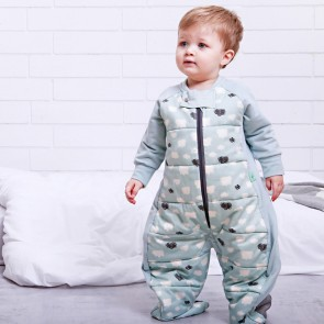 Mint Clouds Sleep Suit Bag (2.5 tog) by ergoPouch