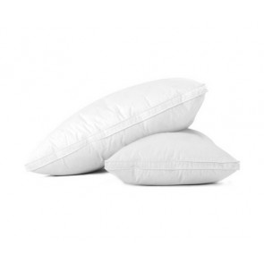 Duck Feather Down Twin Pack Pillow by Giselle Bedding