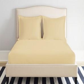 Single 1200TC Premium Cotton Rich Fitted Sheet by Park Avenue